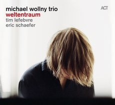 Michael Wollny Trio.jpg